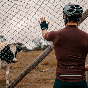 Person in a cycling jersey watching a cow